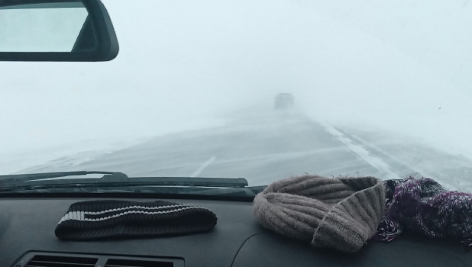 Метель в Алтайском крае.