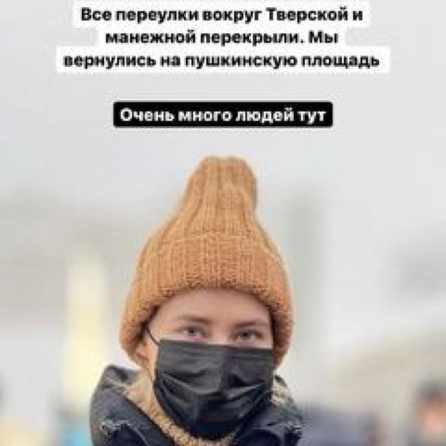 Парфенов, Лапенко и туалетный ершик. Как российские знаменитости протестовали на митингах 23 января