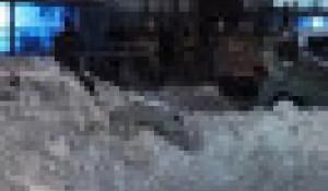 Снежная лавина перевернула авто.