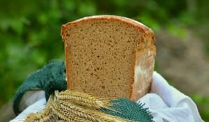 Хлеб. Зерно.