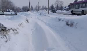 Снег во Власихе.