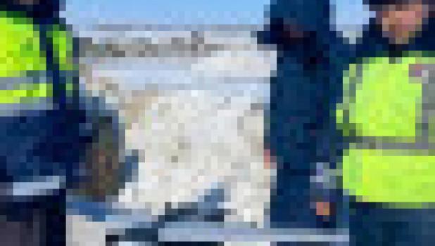 Беспилотники над дорогами Алтайского края.