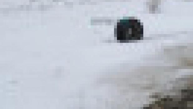 Инцидент с автобусом Барнаул-Яровое.