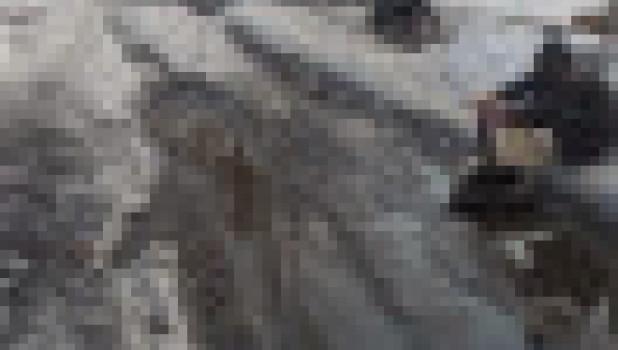 С улицы в Барнауле откачивают воду.