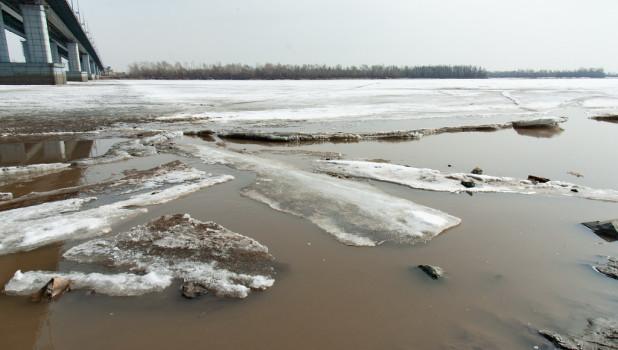 Обь перед началом ледохода.