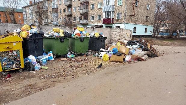 Рубцовск утопает в мусоре.