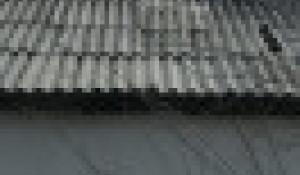 Тополинская средняя школа. Алтайский край.