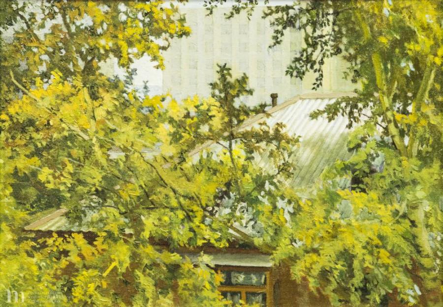 Выставка работ Владимира Шкиля в художественном музее