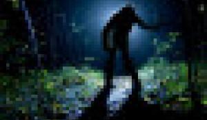 Человек с фонарем. Ночь. Лес.