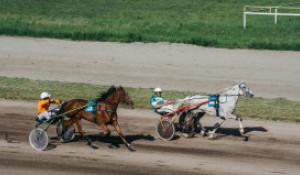 На Барнаульском ипподроме прошло торжественное открытие бегового сезона.