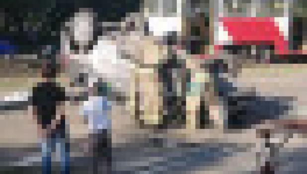Авария в Барнауле.