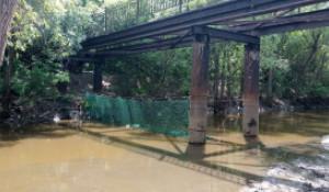 В краевой столице на реке Барнаулка установили мусороуловитель.