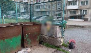 Тело младенца нашли в мусоре. Красноярский край.