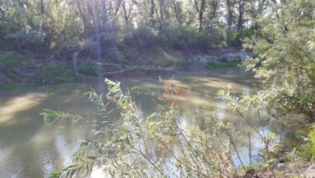 Река Алей.