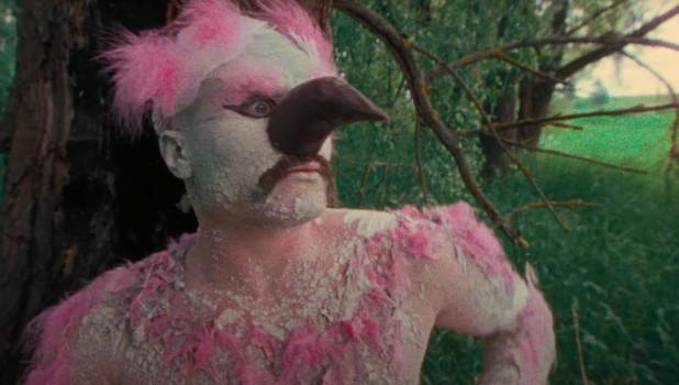 "Кадр из клипа ""Розовый фламинго"""