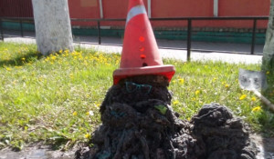 Скульптура из канализационных отходов.