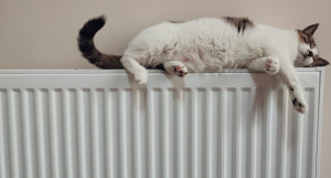 Отопление. Тепло. Батареи.