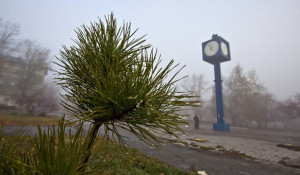 Туман и дымка в Барнауле.